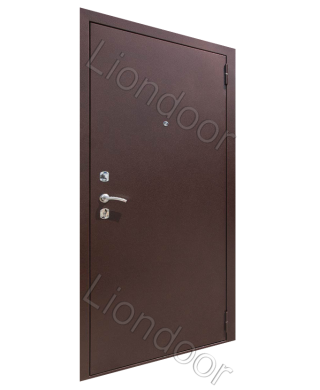 Входная дверь Лион-10