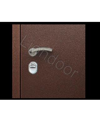 Входная дверь Лион-14