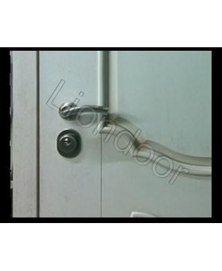 Входная дверь Лион-35
