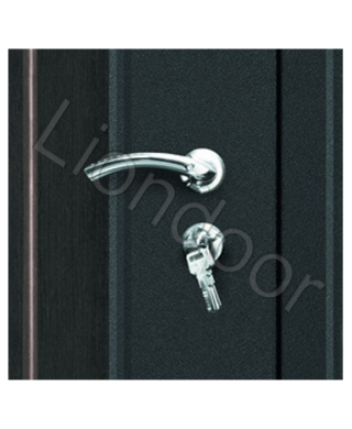 Входная дверь Лион-115