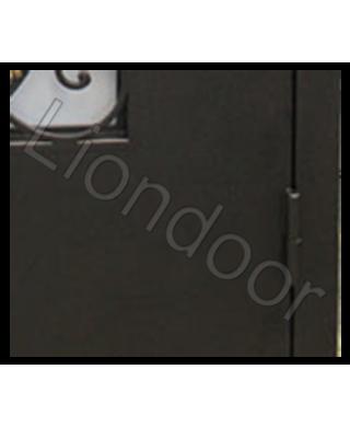 Входная дверь Лион-118