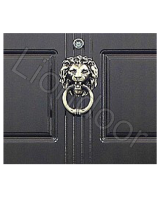 Входная дверь Лион-356