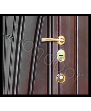 Входная дверь Лион-160