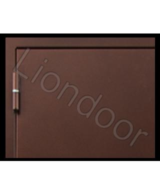 Входная дверь Лион-164