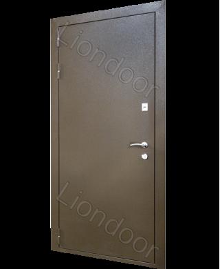 Входная дверь Лион-197