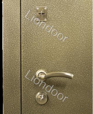 Входная дверь Лион-198