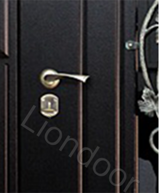 Входная дверь Лион-225