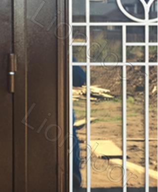Входная дверь Лион-255