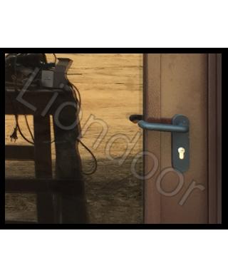 Входная дверь Лион-287