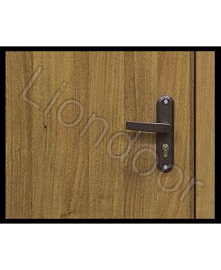 Входная дверь Лион-296