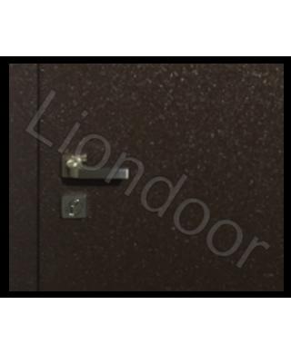 Входная дверь Лион-396