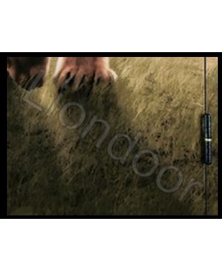 Входная дверь Лион-429