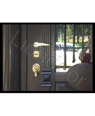 Входная дверь Лион-479