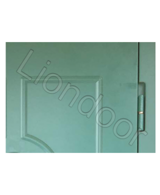 Входная дверь Лион-481