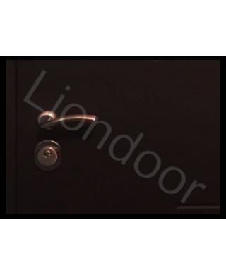 Входная дверь Лион-529